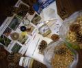 Zondag 11 januari; De Boerderij als Vogelrestaurant