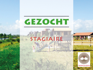 vacature stagiaire