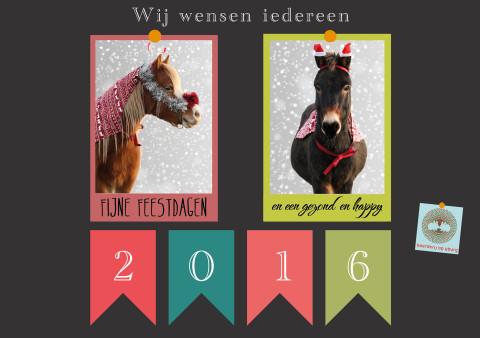 Prettige feestdagen en de beste wensen voor 2016. Tot in het nieuwe jaar!